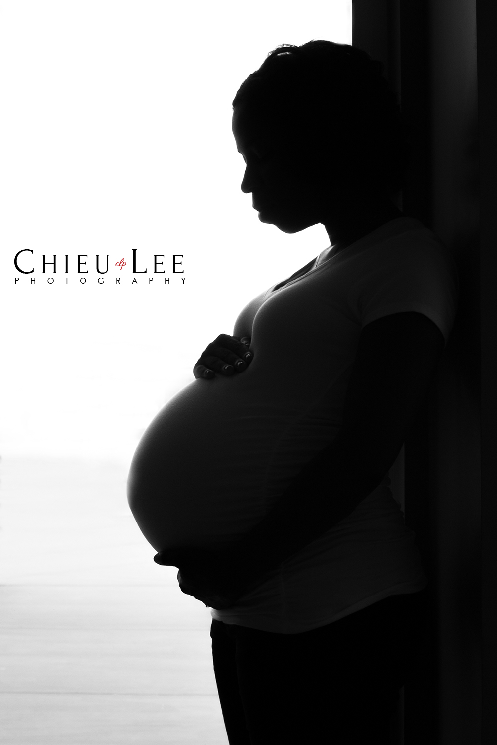 Fairfax Virginia Maternity Photographer