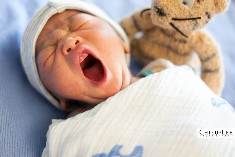 Virginia Newborn Photographer