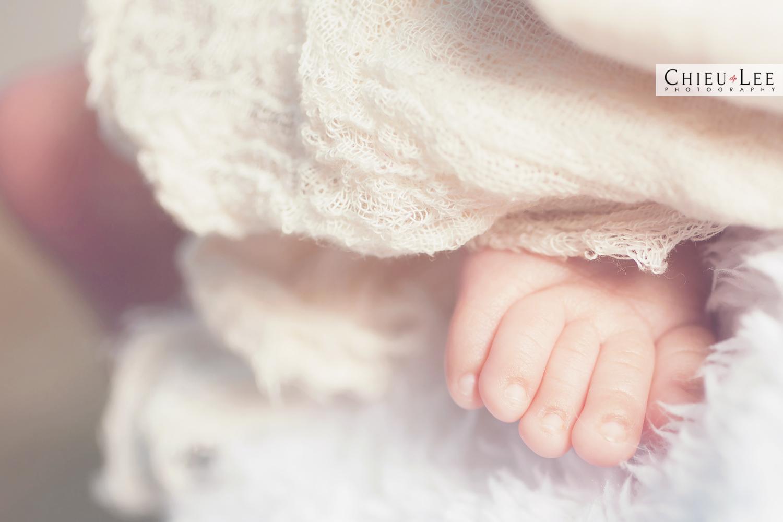Chantilly Newborn Photographer