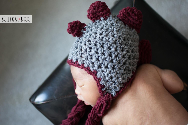 Vienna Fairfax Newborn Photographer
