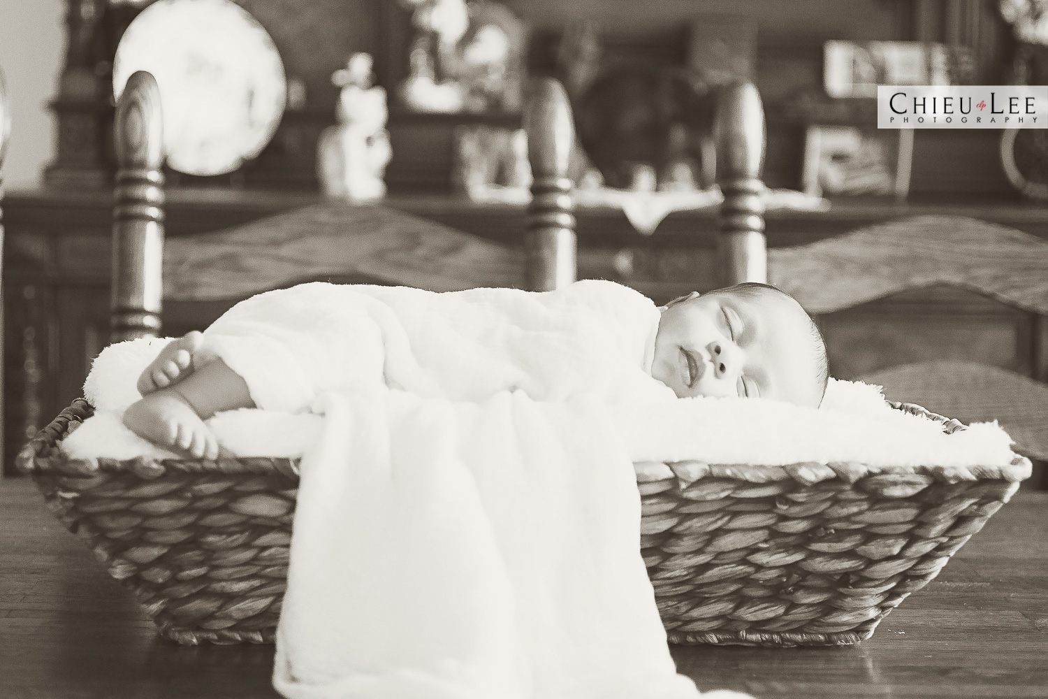 Fairfax Virginia Newborn Photographer