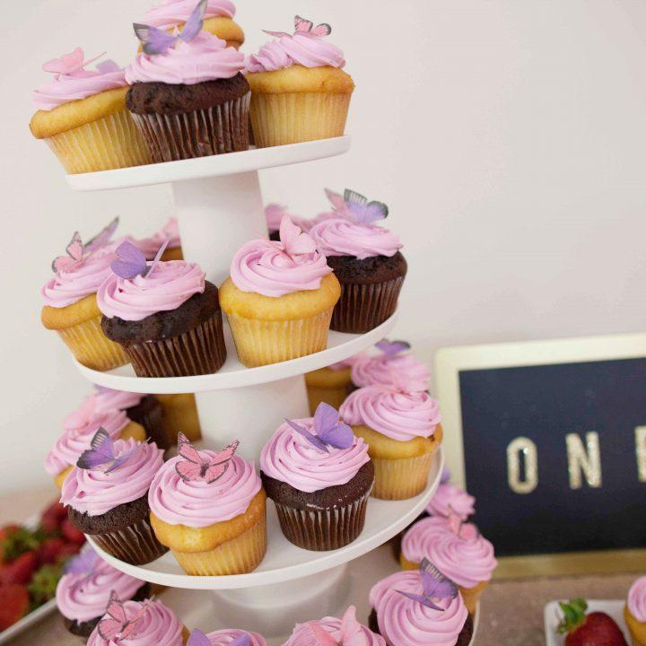 First Birthday Celebration | Fairfax Virginia Baby Photographer