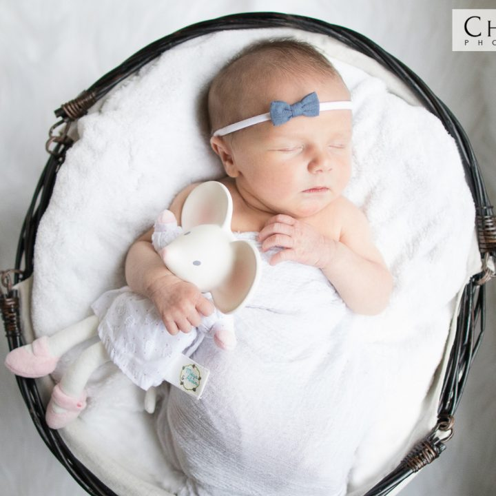 Cannon Newborn Family Portraits | Fairfax Newborn Photographer