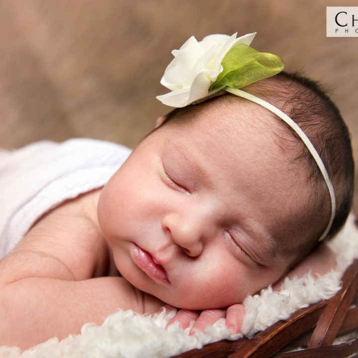 Shmatov Newborn Studio Family Portraits | Newborn Virginia Baby Photographer